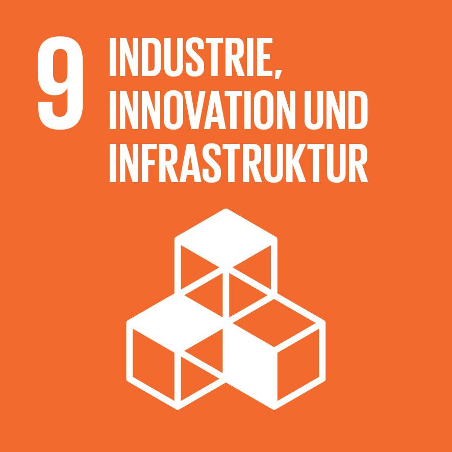 SDG-icon-DE-09