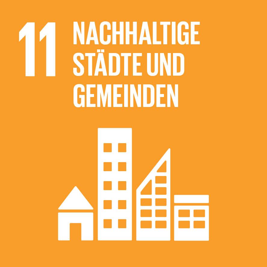 SDG-icon-DE-11